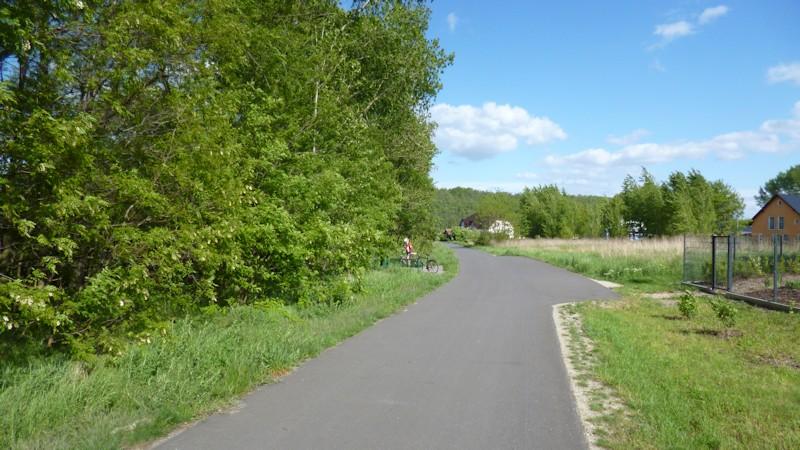 Fahrradweg um den Geiseltalsee
