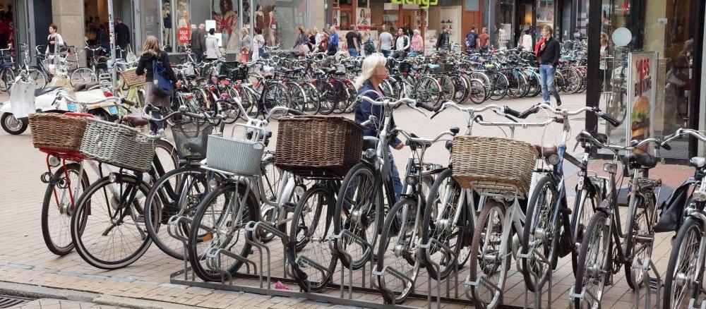 Welches Fahrrad passt zu mir